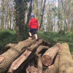 Climbing a pile of logs